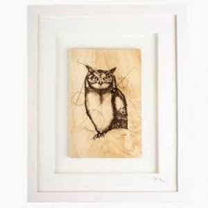 Native Collection Framed Owl
