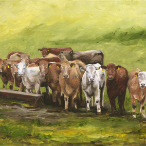 John Galvin Art - Anticipation
